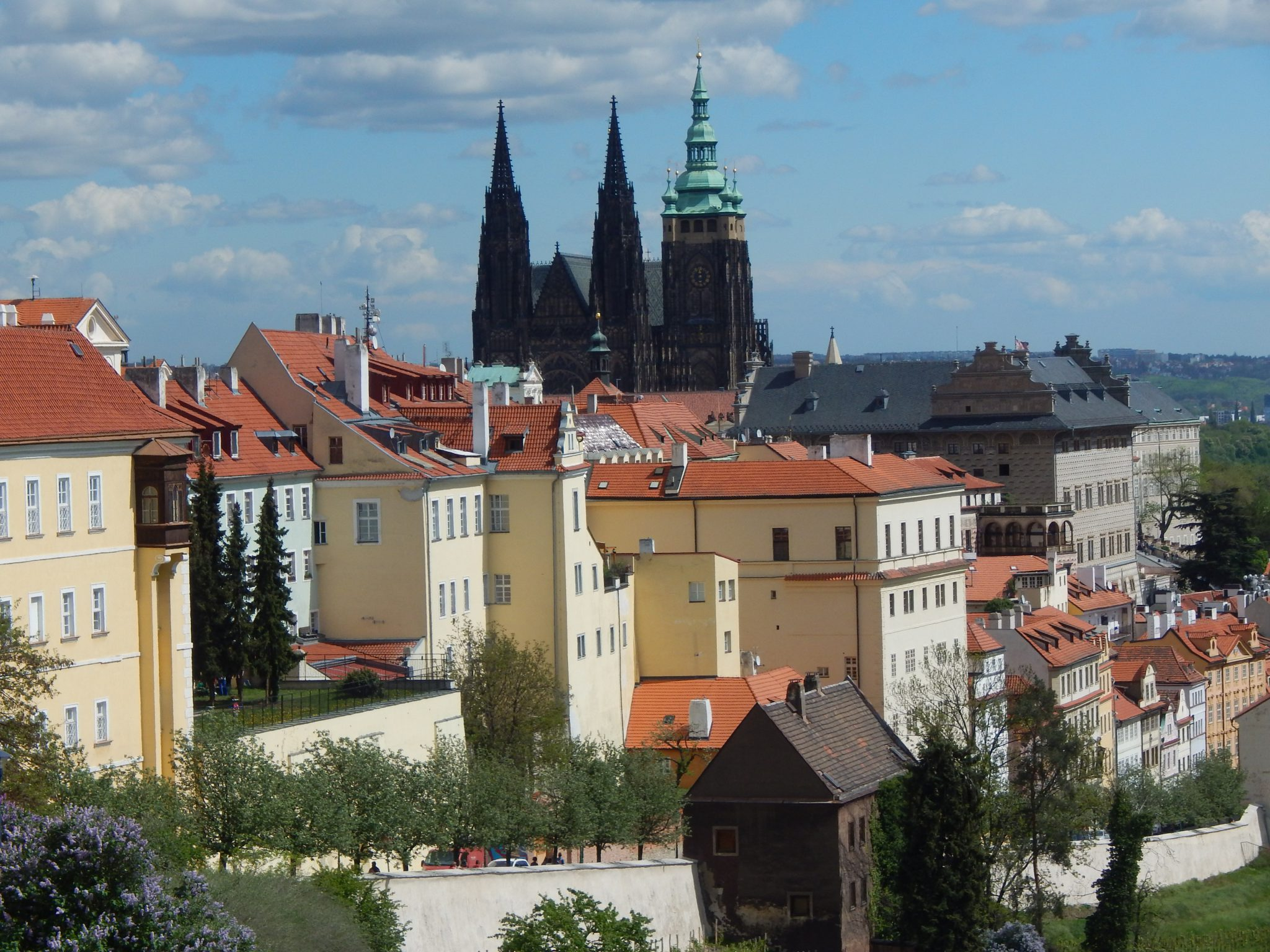 Widok na katedrę i wzgórze zamkowe